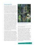 The Reproductive Biology of Western White Pine - Forest Genetics ... - Page 7