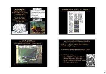 Motivation und Konzentration im Kontext der neuronalen ...