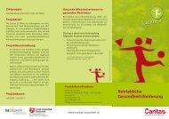 Betriebliche Gesundheitsförderung - Fonds Gesundes Österreich