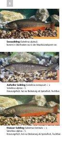 Fische, Krebse und Muscheln in Oberfranken - Bezirk Oberfranken - Seite 6