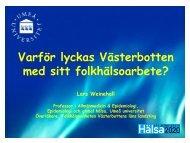 Lars Weinehall, 782 kB
