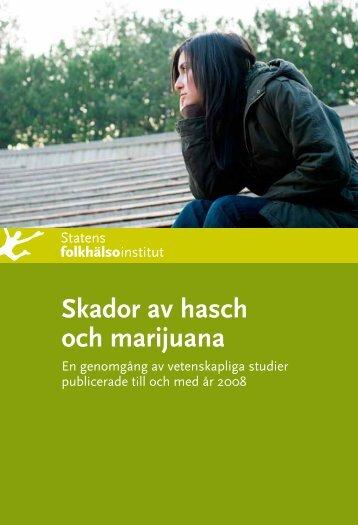 Skador av hasch och marijuana - Statens folkhälsoinstitut