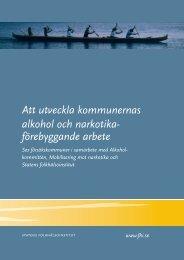 Att utveckla kommunernas alkohol och narkotika ... - Riskbruk