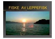 Åge Igland (Norsk Rensefisk) - FHL