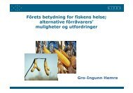 Forets betydning for fiskens helse - FHL