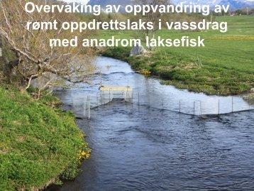 Øyvind Kanstad Hanssen, Ferskvannsbiologen AS - FHL