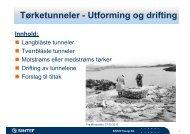 Tørketunneler Utforming og drifting Tørketunneler - Utforming ... - FHL