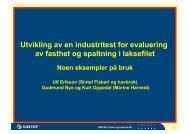 Utvikling av en industritest for evaluering av fasthet og ... - FHL