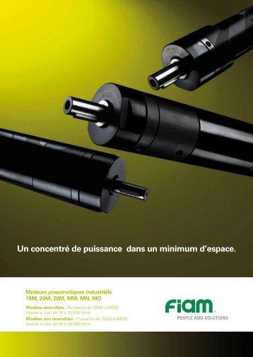 Moteurs pneumatiques industriels - Fiam