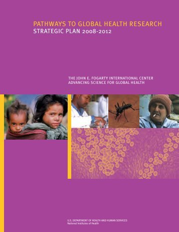 Fogarty Strategic Plan 2008-2012: Pathways to Global Health ...