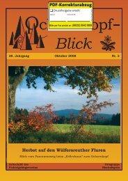 Download / Titelblatt in Farbe! (Vorababzug - 0,9 MB)