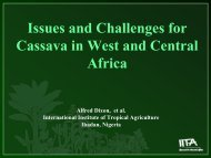Issues and Challenges for Cassava in West and Central ... - FIDAfrique