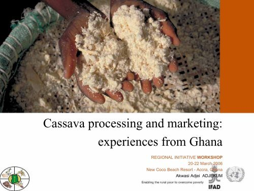 Cassava processing and marketing: experiences from