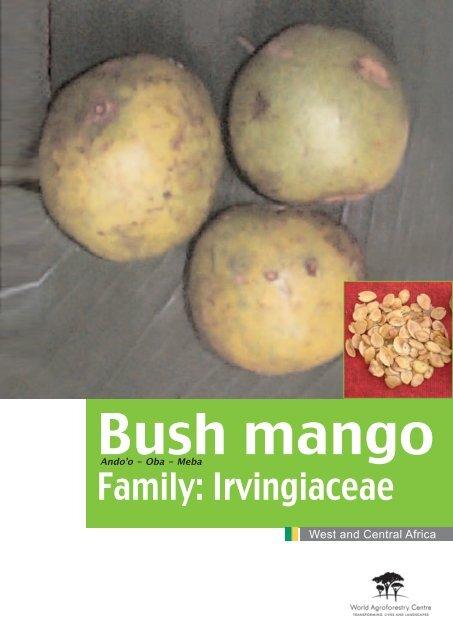 Family Irvingiaceae Fidafrique