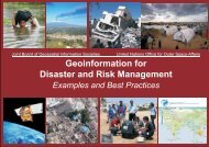 Geoinformation for Disaster and Risk Management - ISPRS