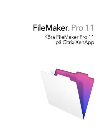 Running FileMaker Pro on Citrix XenApp