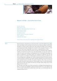 Arbeitsblatt (pdf) - Filme für eine Welt