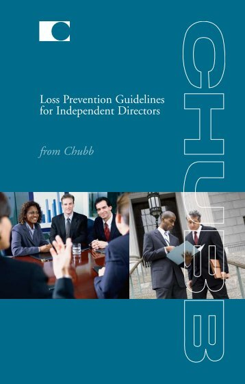Loss Prevention Guidelines for Independent Directors - Financial ...