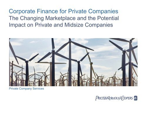 Corporate Finance for Private Companies - Financial Executives ...