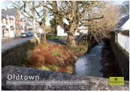Oldtown_VDFP - Fingal County Council