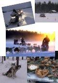 Wintermärchen Schwedisch-Lappland - Seite 6