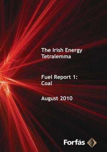 The Irish Energy Tetralemma - Fuel Reports - Forfás