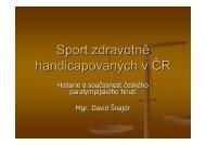 Sport zdravotně handicapovaných v ČR