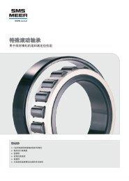 中文PDF (1,4 MB) - SMS Meer GmbH