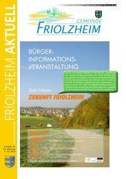 pdf herunterladen - Friolzheim