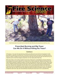 Prescribed Burning and Big Trees - Joint Fire Science Program