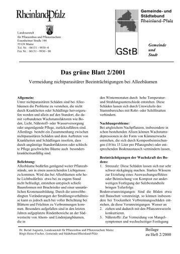 Das grüne Blatt 2/2001 - Gartenakademie