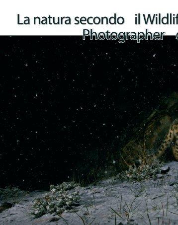 La natura secondo il Wildlife Photographer of the Year - Fotografia.it
