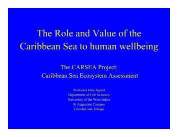 The Role and Value of the Caribbean Sea to human wellbeing
