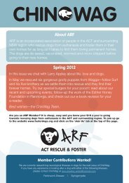 Here - ACT Rescue & Foster