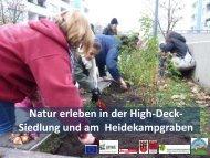 Natur erleben in der High-Deck-Siedlung und am Heidekampgraben