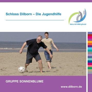 Jugendgruppe Sonnenblume - Schloss Dilborn - Die Jugendhilfe
