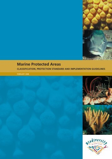 Classification, Protection Standard and Implementation Guidelines