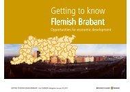 Opportunities for economic development - Flanders Smart Hub