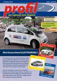 PDF: Download profil-Ausgabe Juni/Juli 2011
