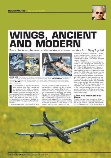 AMI Dec 2010 - Flying Toys Ltd