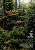 Bayernwald - Nansen & Piccard - Seite 5
