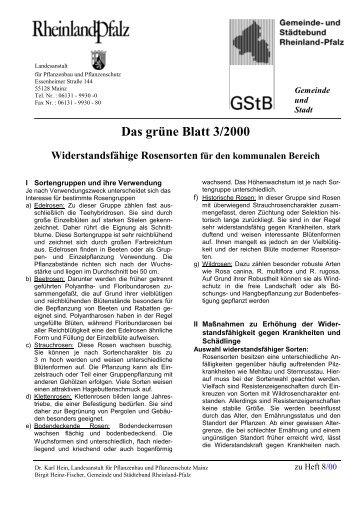 Das grüne Blatt 3/2000 - Gartenakademie