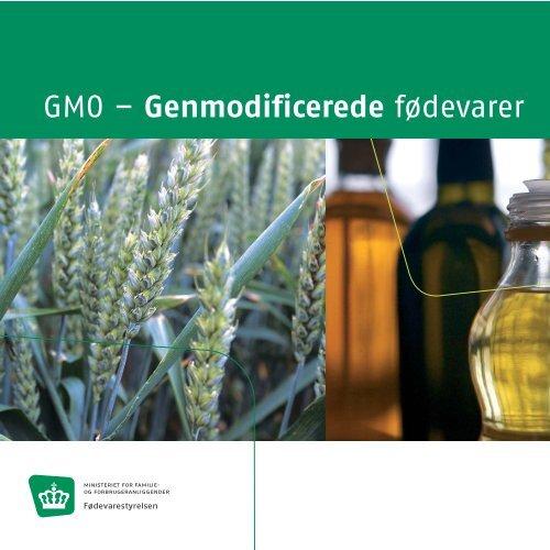 GMO – Genmodificerede fødevarer - Fødevarestyrelsen