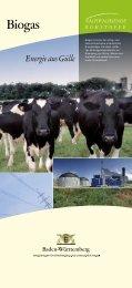 Biogas ist einer der erfolg- und aussichtsreichsten ... - ForstBW