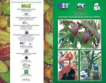 Aspectos agronomicos para el cultivo de cacao