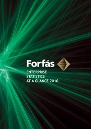 Enterprise Statistics At A Glance 2010 - Forfás