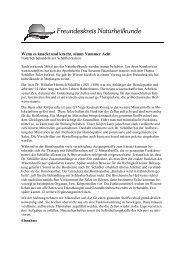 2012.47 Bericht Schüssler-Salze - Freundeskreis Naturheilkunde ...