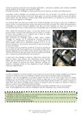 Télécharger le dossier complet, 15 pages - Fédération française des ... - Page 6