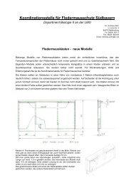 neue Modelle - Fledermaus-Bayern