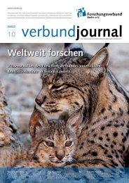 84/2010 - Forschungsverbund Berlin